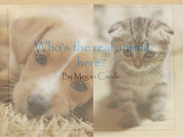 Who's the real animalhere?By Megan Caudle