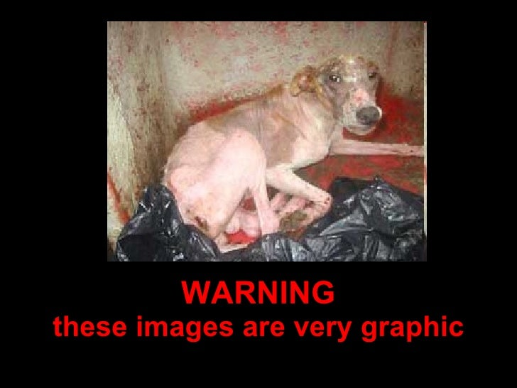 WARNING these images are very graphic