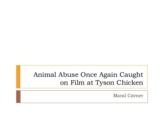 Animal Abuse Once Again Caught on Film at Tyson Chicken Maral Cavner