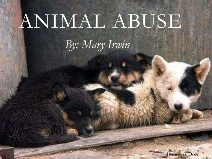 ANIMAL ABUSE   By: Mary Irwin                    Homeless Dogs