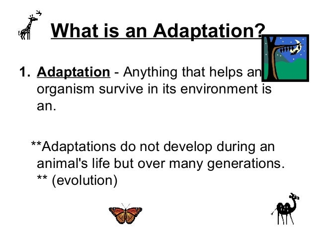animal adaptation - photo #32