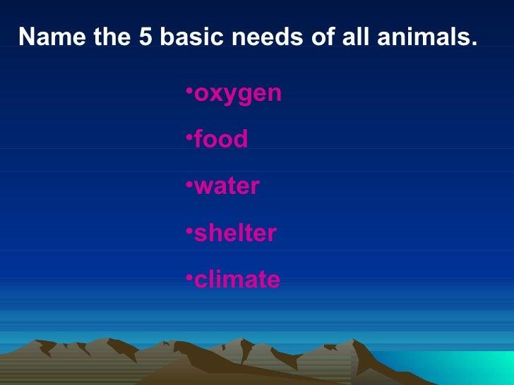 animal behavior adaptations to meet basic needs of a man