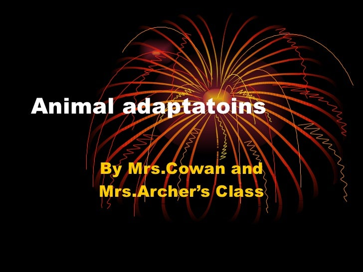 Animal adaptatoins By Mrs.Cowan and Mrs.Archer's Class