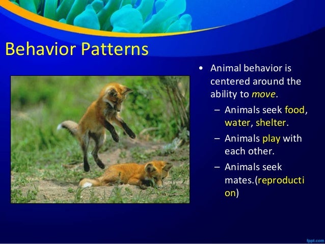 animal behaviors The encyclopedia of animal behavior has engaged with great success the efforts  of many of the best behavioral biologists of the 21st century section editors.