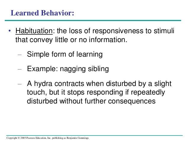 animal behavior 2012 2013