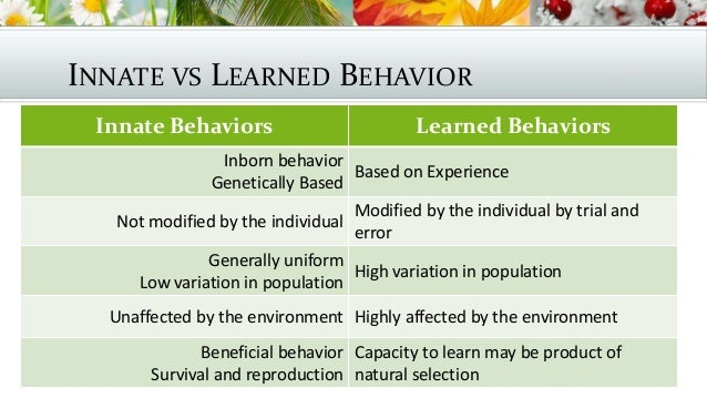 Innate Behavior Natural Selection