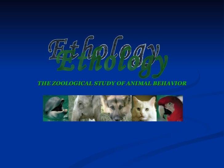 THE ZOOLOGICAL STUDY OF ANIMAL BEHAVIOR