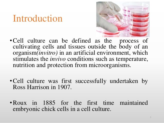 Animal cell culture techniques
