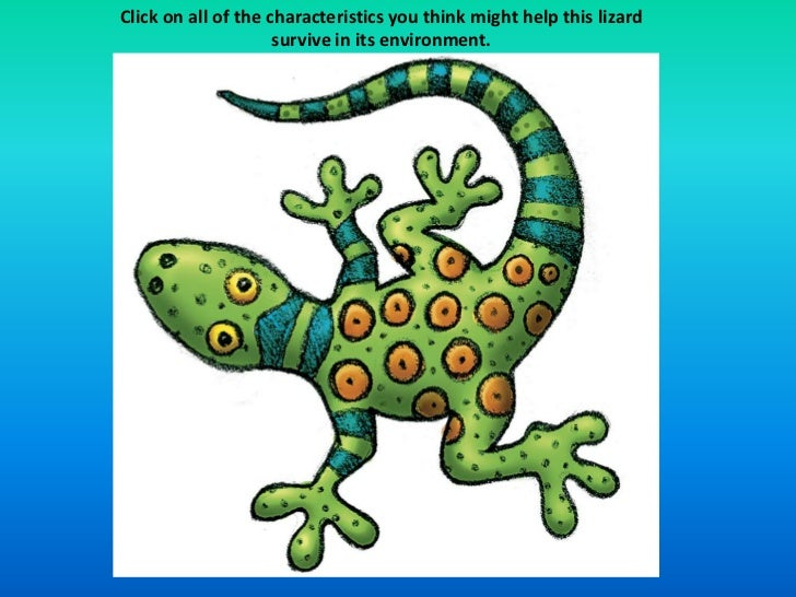 Click on all of the characteristics you think might help this lizard                     survive in its environment.