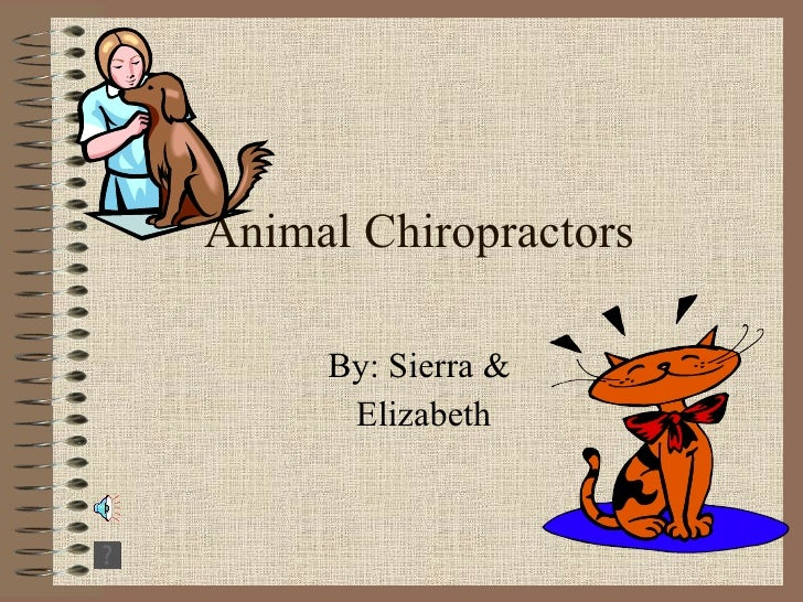 Animal Chiropractors By: Sierra &  Elizabeth