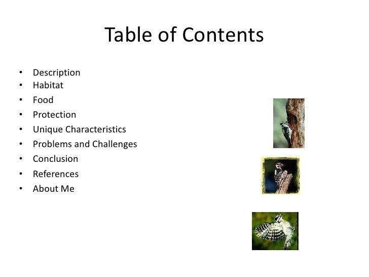 Animal Classification Group 3