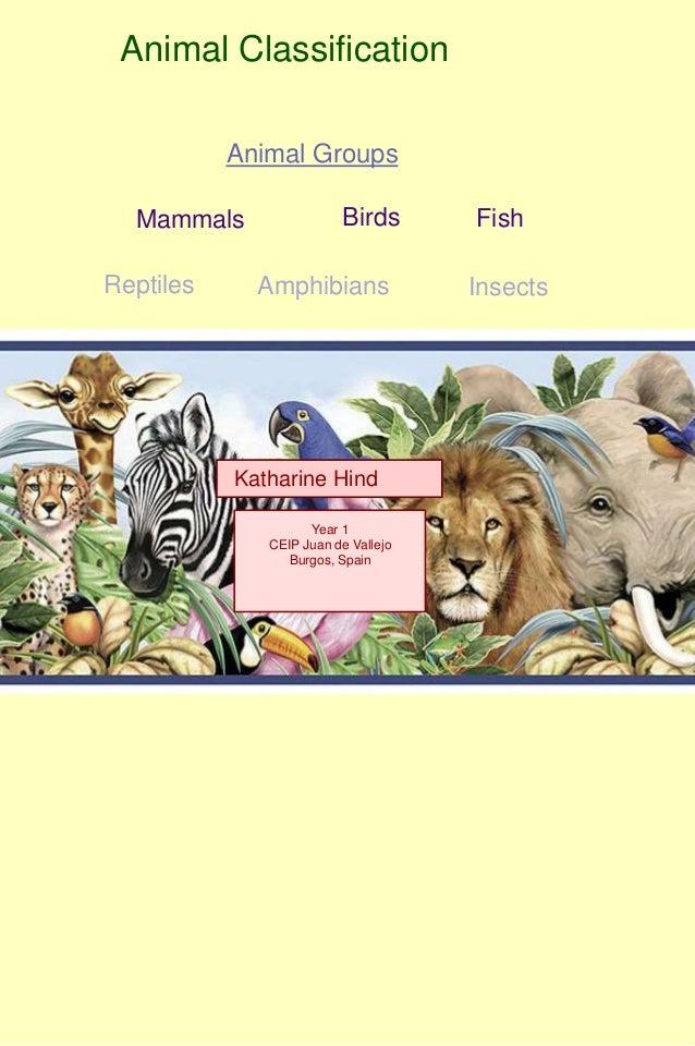 Animal Classification           Animal Groups  Mammals                Birds       FishReptiles     Amphibians             ...