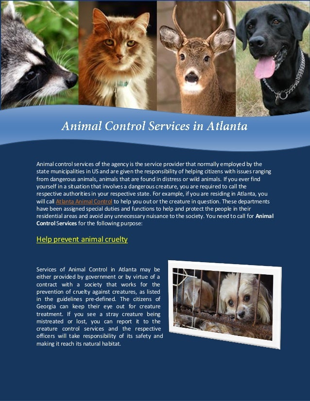 Animal control services of the agency is the service provider that normally employed by the state municipalities in US and...