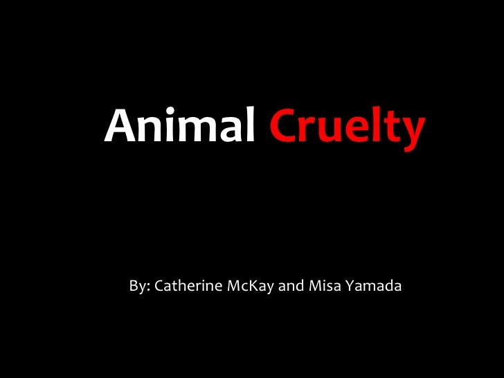 Animal Cruelty By: Catherine McKay and Misa Yamada