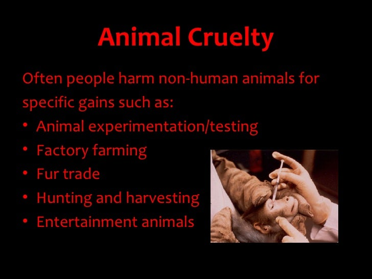 persuasive writing topic animal rights Unit 1 persuasive writing animal rights may 19 2017 writing sample of essay on a given topic animal rights.