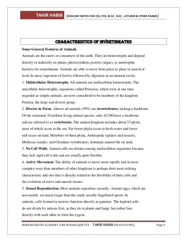 Introduction ms word 2010 pdf