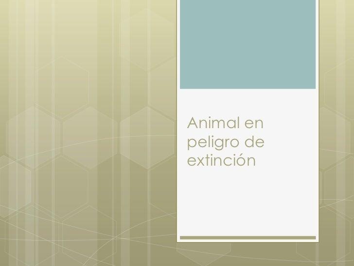Animal enpeligro deextinción