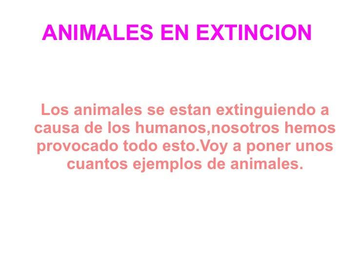 ANIMALES EN EXTINCION Los animales se estan extinguiendo a causa de los humanos,nosotros hemos provocado todo esto.Voy a p...