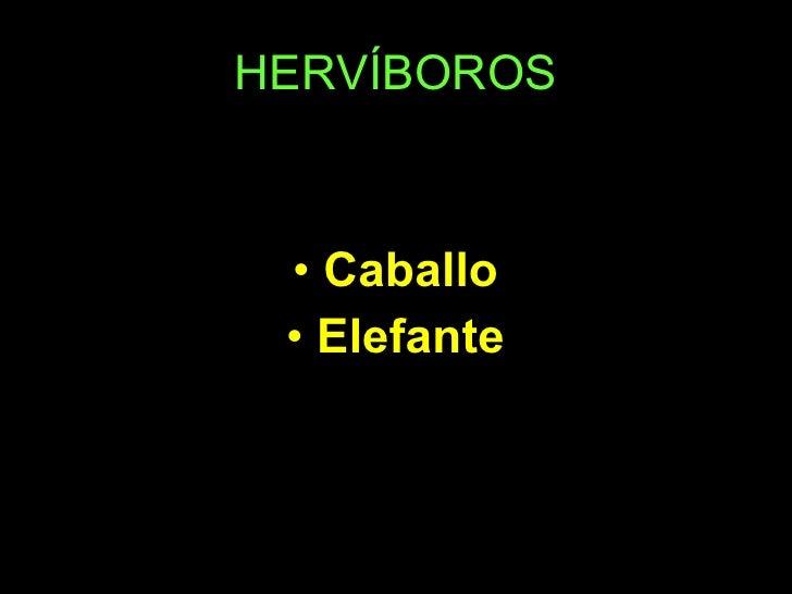 HERVÍBOROS <ul><li>Caballo </li></ul><ul><li>Elefante </li></ul>