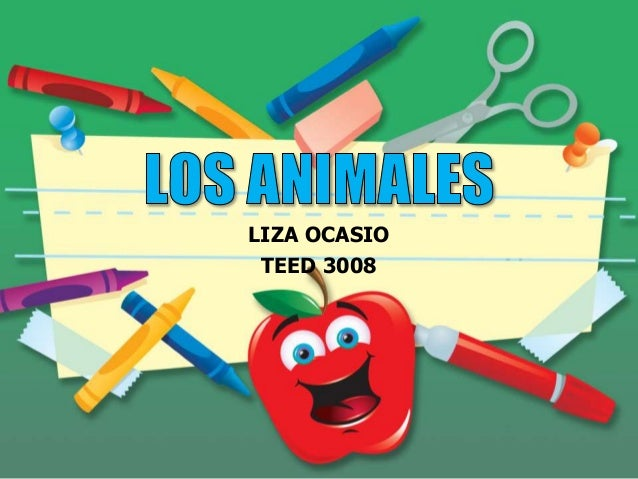 LIZA OCASIO TEED 3008