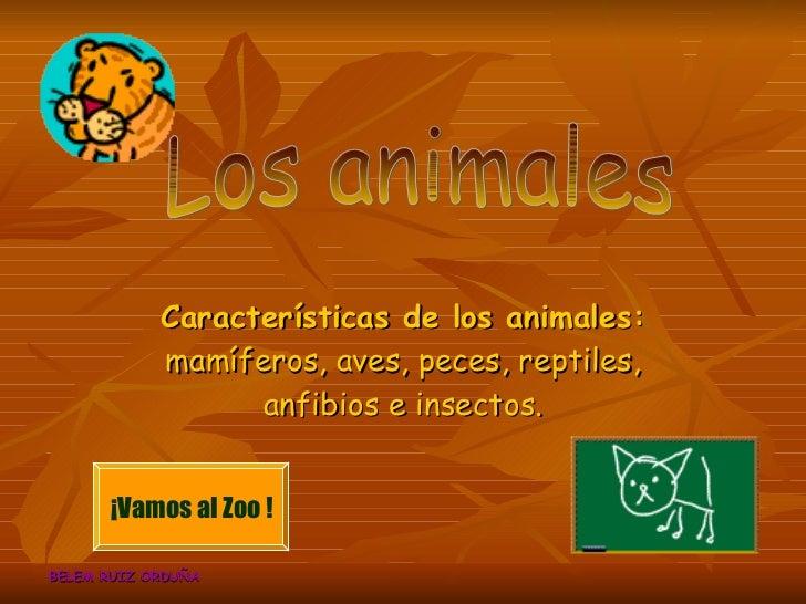 Características de los animales:  mamíferos, aves, peces, reptiles, anfibios e insectos. BELEM RUIZ ORDUÑA ¡Vamos al Zoo !...