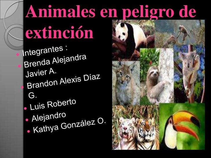 Animales en peligro deextinción