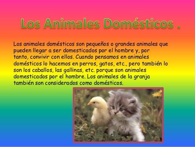 Los animales domésticos son pequeños o grandes animales quepueden llegar a ser domesticados por el hombre y, portanto, con...