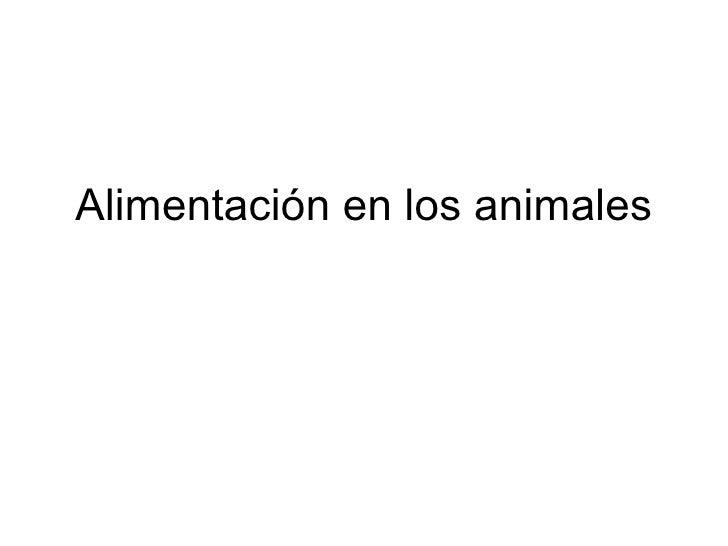 Alimentación en los animales