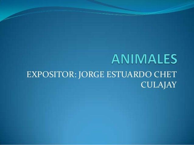 EXPOSITOR: JORGE ESTUARDO CHET                       CULAJAY