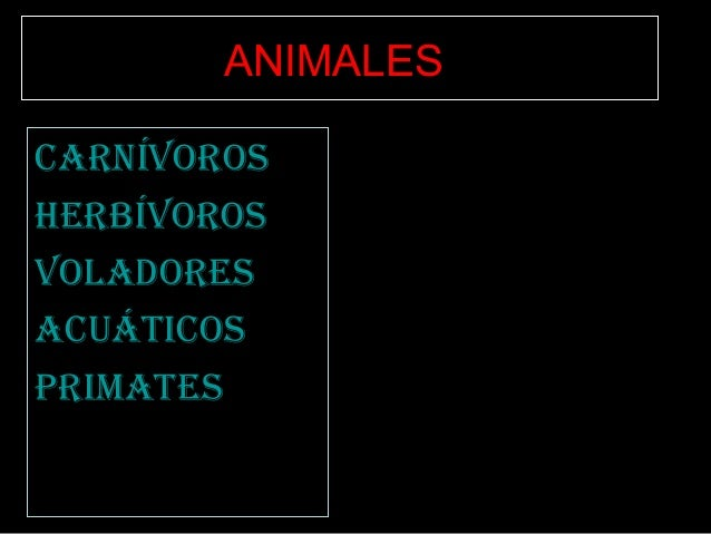 CarnívorosHerbívorosvoladoresaCuátiCosprimatesANIMALES