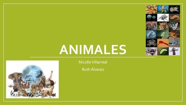 ANIMALES  Nicolle Villarreal  Ruth Álvarez