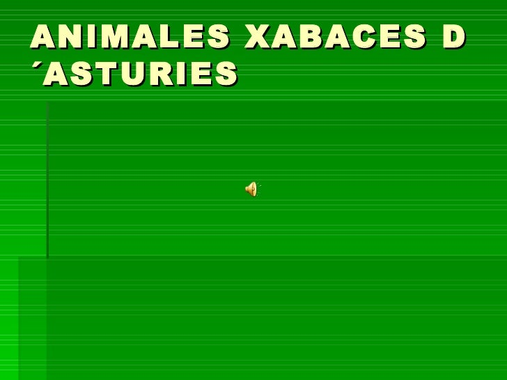 ANIMALES XABACES D´ASTURIES