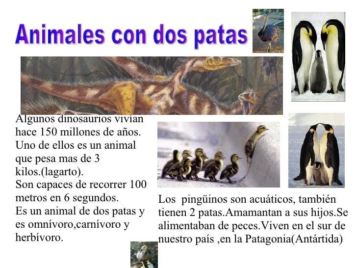 Animales con dos patas Algunos dinosaurios vivían hace 150 millones de años. Uno de ellos es un animal que pesa mas de 3 k...