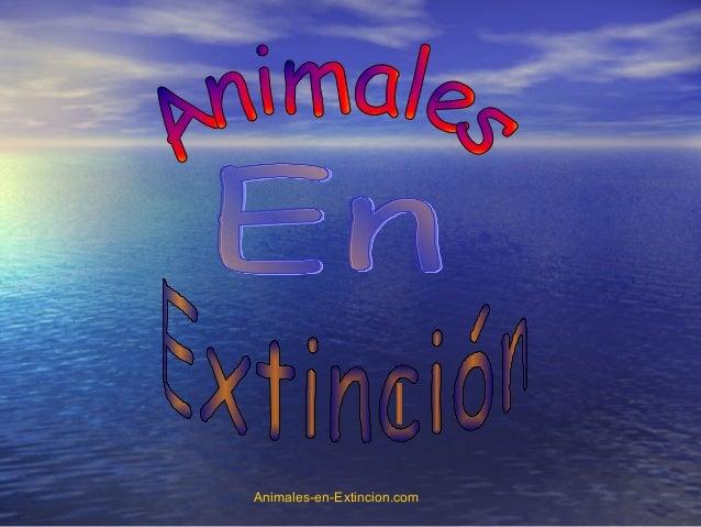 Animales-en-Extincion.com