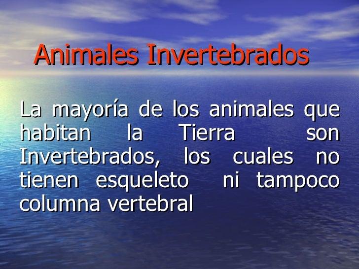 Animales Invertebrados La mayoría de los animales que habitan la Tierra  son Invertebrados, los cuales no tienen esqueleto...