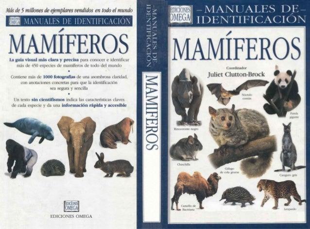Animales   manual de identificacion de mamiferos