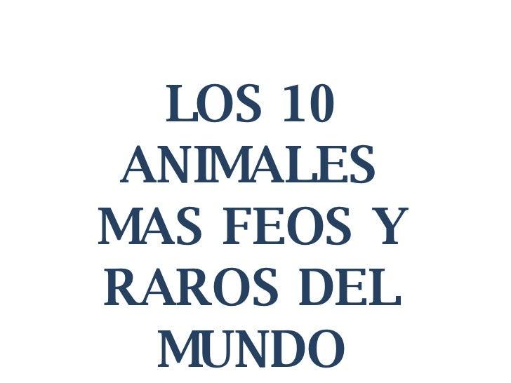 LOS 10 ANIMALES MAS FEOS Y RAROS DEL MUNDO