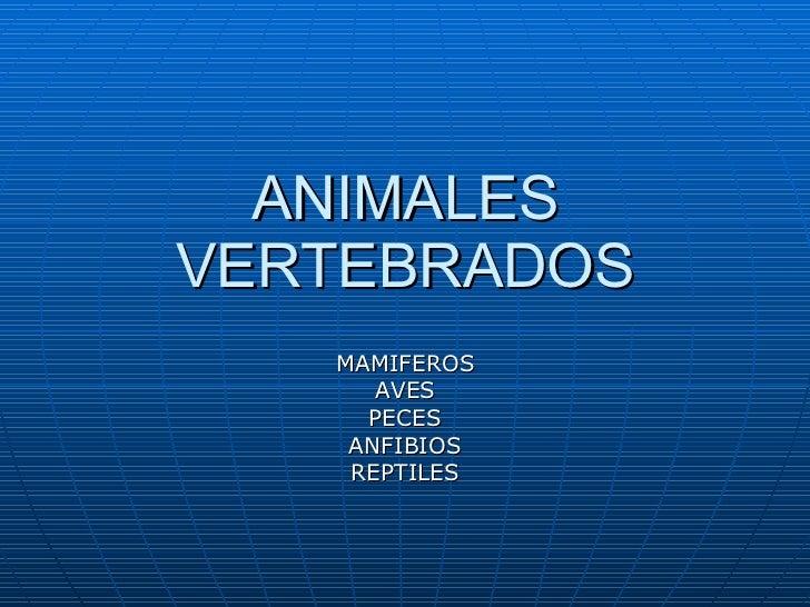 ANIMALES VERTEBRADOS MAMIFEROS AVES PECES ANFIBIOS REPTILES