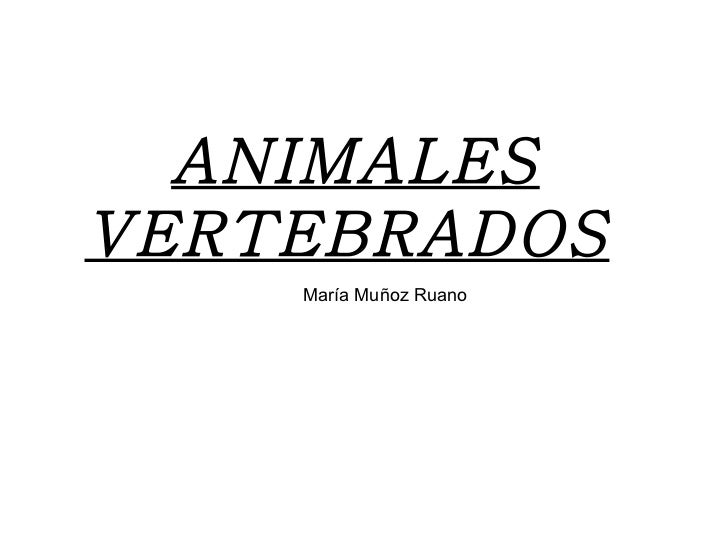 ANIMALES VERTEBRADOS   María Muñoz Ruano