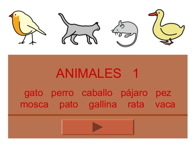 ANIMALES 1 gato perro caballo pájaro pez mosca pato gallina rata vaca