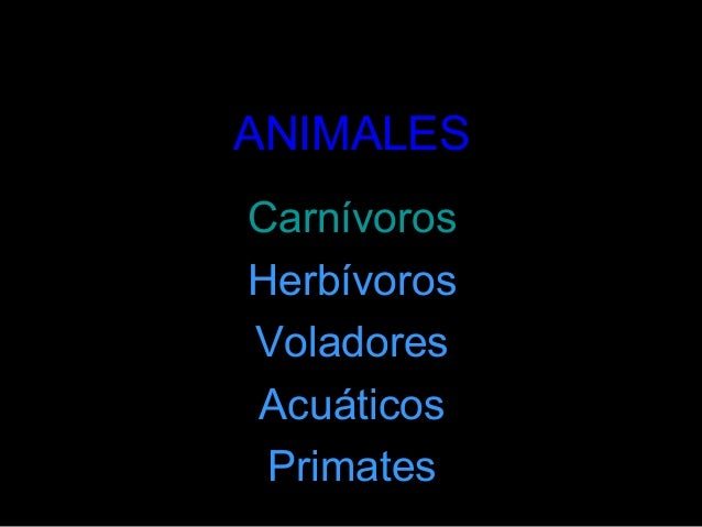 ANIMALESCarnívorosHerbívorosVoladoresAcuáticosPrimates