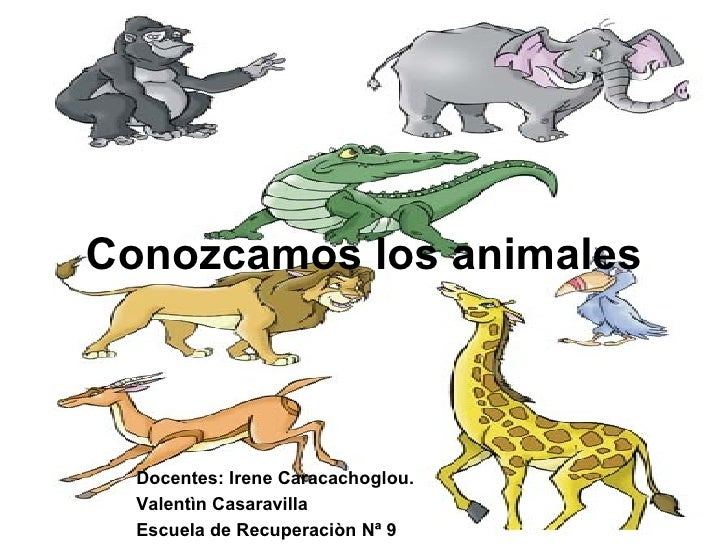 Conozcamos los animales Docentes: Irene Caracachoglou. Valentìn Casaravilla Escuela de Recuperaciòn Nª 9