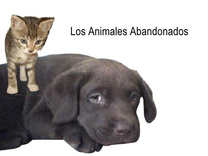 Los Animales Abandonados