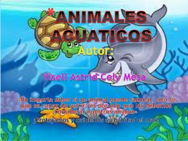 Animales Acuaticos Para Ninos