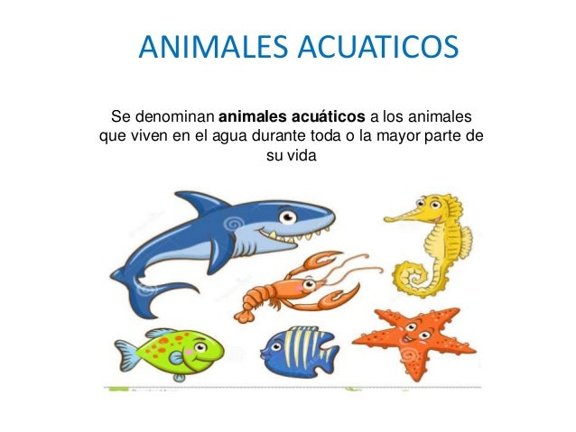 Celula Vegetalppt 1 besides Estatica Fetal E Relaes Tero Fetais together with Animales Acuaticos 62961115 besides 2435 as well Mob Wives Lee Davanzo Is Out Of Prison. on karen o