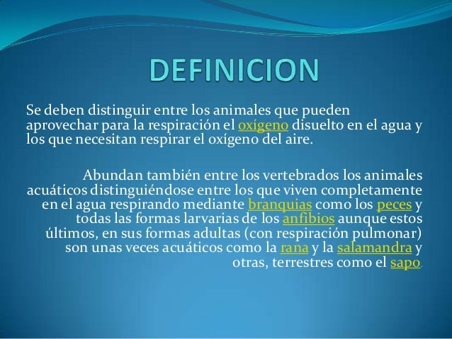 Animales acuaticos diapositivas for Peces que no necesitan oxigeno
