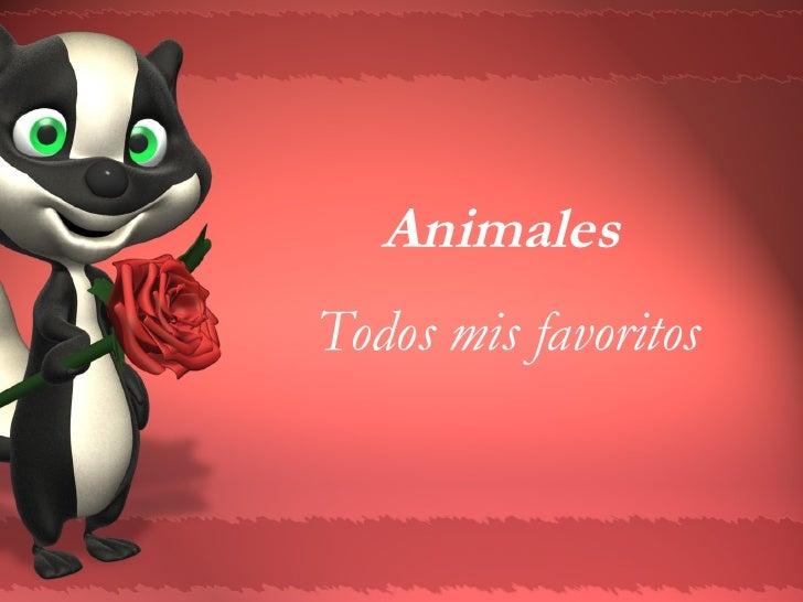 Animales  Todos mis favoritos