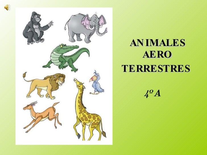Worksheet. Animales Aero Terrestres 4 A  B