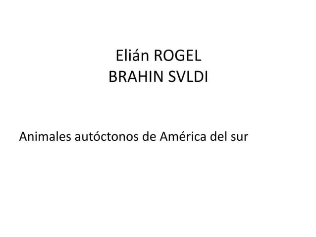 Elián ROGEL BRAHIN SVLDI  Animales autóctonos de América del sur