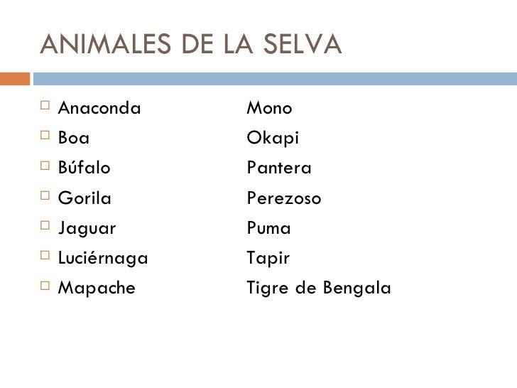 Animales Bosque, Selva Y Montaña